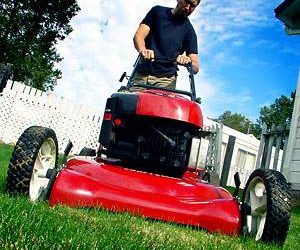 Get Ready to Rev Your (Lawnmower) Engines!